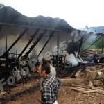 FotoPress-24.ro incendiu (4)