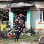 incendiu_bradu (2)