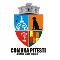 comuna-pitesti