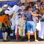 festival_deschidere (1)