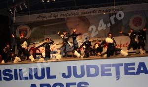 prefecrura_dansuri (50)