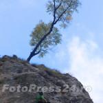 escalada_sportiva (32)