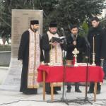 1_decembrie_mioveni (9)