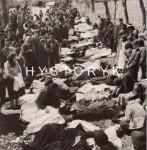 incendiu-costesti-1930 (2)