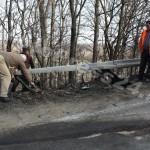 transportor-rasturnat-cerbu albota-foto Mihai Neacsu (4)