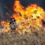 incendiu  stuf Pitesti-foto-Mihai  Neacsu (1)