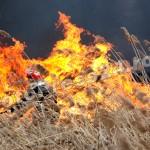 incendiu  stuf Pitesti-foto-Mihai  Neacsu (3)