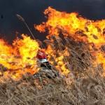 incendiu  stuf Pitesti-foto-Mihai  Neacsu (4)