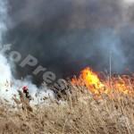 incendiu  stuf Pitesti-foto-Mihai  Neacsu (8)