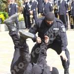 ziua_jandarmeriei-foto'mihai_neacsu-fotopress24 (10)