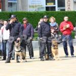 ziua_jandarmeriei-foto'mihai_neacsu-fotopress24 (15)