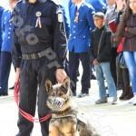 ziua_jandarmeriei-foto'mihai_neacsu-fotopress24