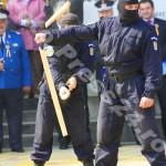 ziua_jandarmeriei-foto'mihai_neacsu-fotopress24 (26)