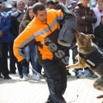 ziua_jandarmeriei-foto'mihai_neacsu-fotopress24 (31)