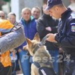 ziua_jandarmeriei-foto'mihai_neacsu-fotopress24 (32)