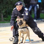ziua_jandarmeriei-foto'mihai_neacsu-fotopress24 (33)