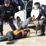 ziua_jandarmeriei-foto'mihai_neacsu-fotopress24 (35)