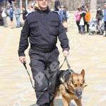 ziua_jandarmeriei-foto'mihai_neacsu-fotopress24 (51)