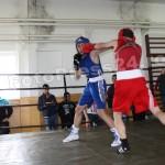 box sala-foto-Mihai Neacsu (15)