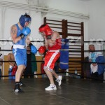 box sala-foto-Mihai Neacsu (17)
