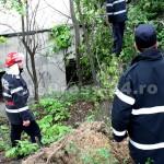 copac cazut-foto-Mihai Neacsu (6)