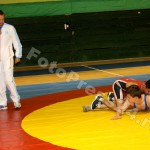 lupte sala-foto-Mihai Neacsu (1)
