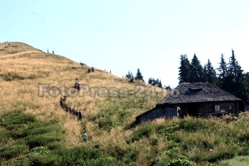 Munte-FotoPress24.ro-Mihai-Neacsu