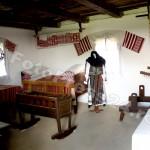 Muzeul Golesti-foto-Mihai Neacsu (11)