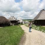 Muzeul Golesti-foto-Mihai Neacsu (13)