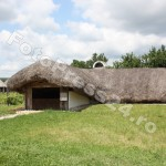 Muzeul Golesti-foto-Mihai Neacsu (4)