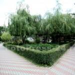 vandalizare parc-FotoPress24.ro-Mihai Neacsu (8)