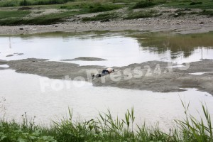 inecata-riul Arges-FotoPress24.ro Mihai Neacsu  (3)