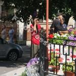 Sf.Marie-FotoPress24.ro-Mihai Neacsu (6)