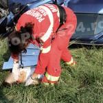accident mortal Cerbu-FotoPress24.ro-Mihai Neacsu  (8)