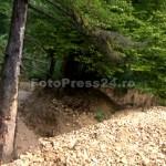 blocaj_mateias-fotopress24 (5)