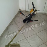 bunuri-furate-FotoPress24.ro-Mihai Neacsu (1)
