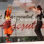 finalul_festivalului-international-de-folclor-fotopress24.ro  (38)