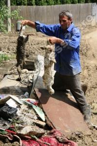 sinistrati inundatie-FotoPress24-Mihai Neacsu  (31)