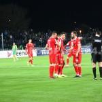 CS.Mioveni-Dinamo1-0-FotoPress24.ro-Mihai Neacsu (16)