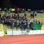 CS.Mioveni-Dinamo1-0-FotoPress24.ro-Mihai Neacsu (8)