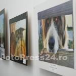 expo-arta-foto-Mihai Neacsu (10)