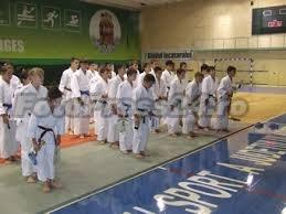 judo-foto-Mihai Neacsu