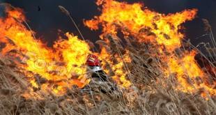 incendiu-stuf-Pitesti-foto-Mihai-Neacsu