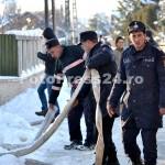 incendiu casa stefanesti str primaverii-fotopress24 (24)