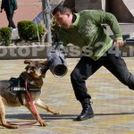 ziua_jandarmeriei-arges_fotopress24 (19)