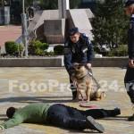 ziua_jandarmeriei-arges_fotopress24 (20)