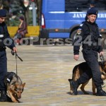 ziua_jandarmeriei-arges_fotopress24 (57)