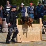 ziua_jandarmeriei-arges_fotopress24 (6)