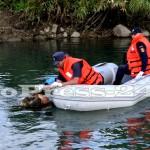 inecata riu arges-fotopress-24ro (11)