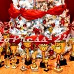 gala_sportului_cs_dacia_mioveni2012-fotopress24 (20)